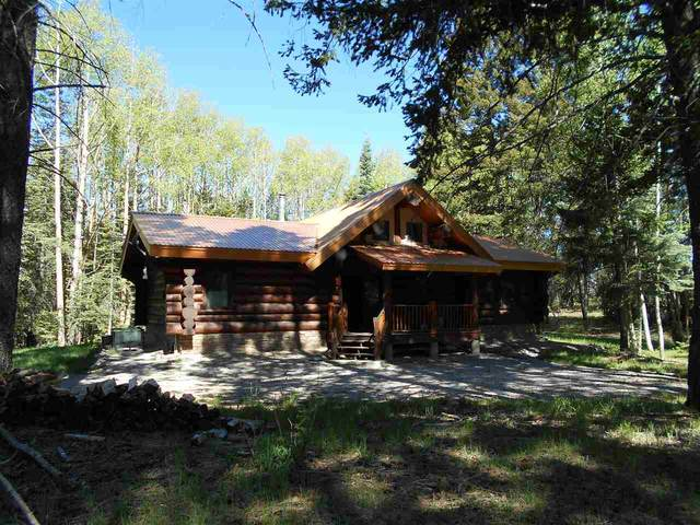 696 Karr Canyon Rd, Cloudcroft, NM 88317 (MLS #164551) :: Assist-2-Sell Buyers and Sellers Preferred Realty