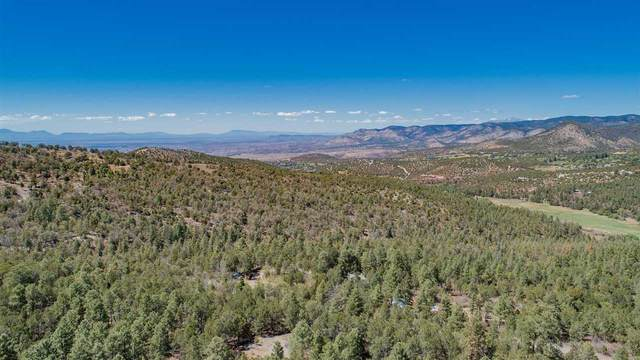 14 Nighthawk, High Rolls Mountain Park, NM 88325 (MLS #164572) :: Assist-2-Sell Buyers and Sellers Preferred Realty