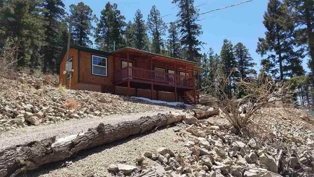 9 Oak Trail Loop, Cloudcroft, NM 88317 (MLS #164578) :: Assist-2-Sell Buyers and Sellers Preferred Realty