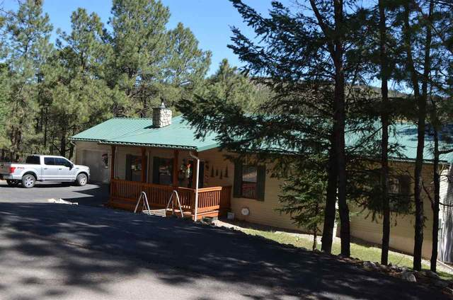 14 Silver Fox Trl #1, Mayhill, NM 88339 (MLS #164581) :: Assist-2-Sell Buyers and Sellers Preferred Realty