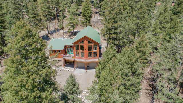 77 Black Forest Dr, Cloudcroft, NM 88317 (MLS #164590) :: Assist-2-Sell Buyers and Sellers Preferred Realty
