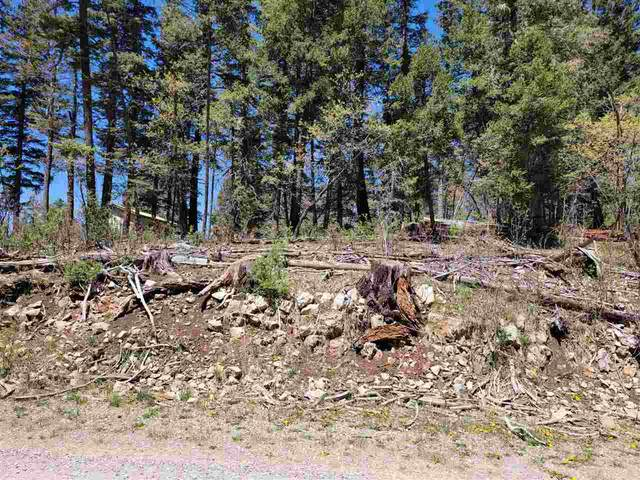 102 Shells Ln, Cloudcroft, NM 88317 (MLS #164641) :: Assist-2-Sell Buyers and Sellers Preferred Realty