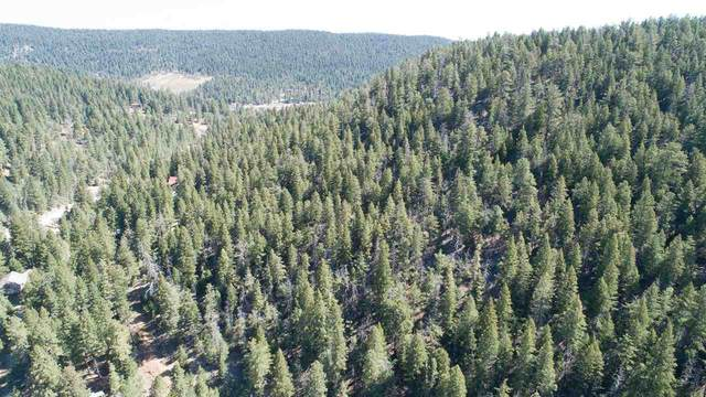121 Young Canyon Rd, Cloudcroft, NM 88317 (MLS #164659) :: Assist-2-Sell Buyers and Sellers Preferred Realty