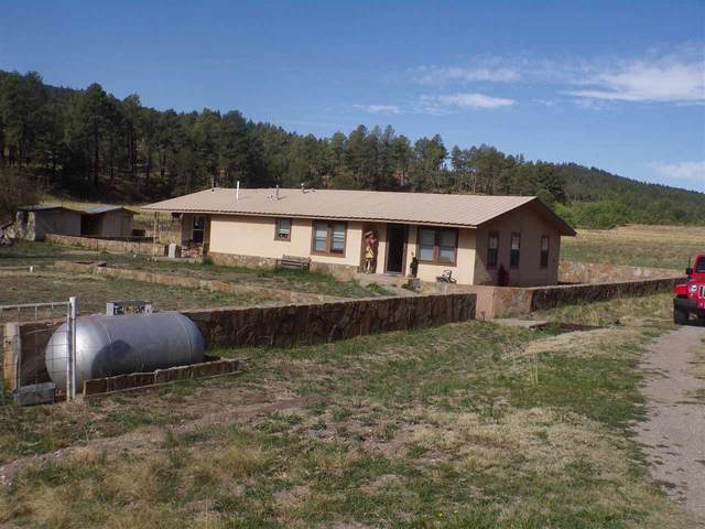 1708 Rio Penasco Rd, Mayhill, NM 88339 (MLS #164665) :: Assist-2-Sell Buyers and Sellers Preferred Realty