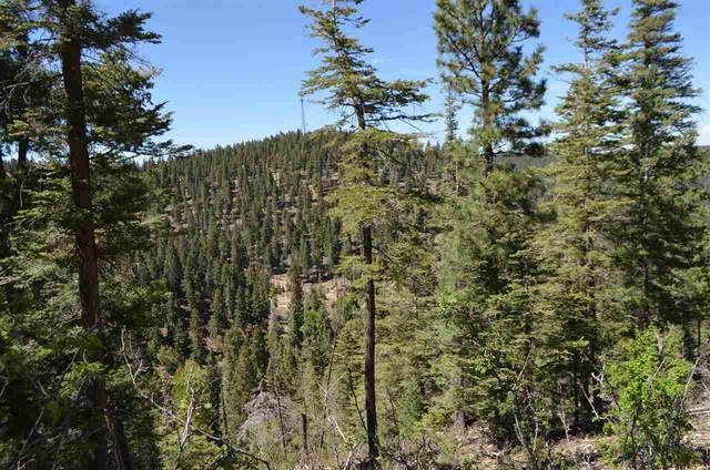 Clear Nite Rd, Cloudcroft, NM 88317 (MLS #164669) :: Assist-2-Sell Buyers and Sellers Preferred Realty