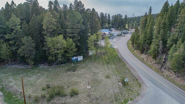 Address Not Published, Cloudcroft, NM 88317 (MLS #164698) :: Assist-2-Sell Buyers and Sellers Preferred Realty