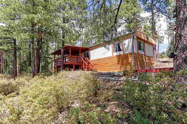 5 Lyra Way, Timberon, NM 88350 (MLS #164703) :: Assist-2-Sell Buyers and Sellers Preferred Realty