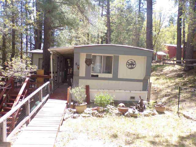 5 Duke Ln, Mayhill, NM 88339 (MLS #164715) :: Assist-2-Sell Buyers and Sellers Preferred Realty