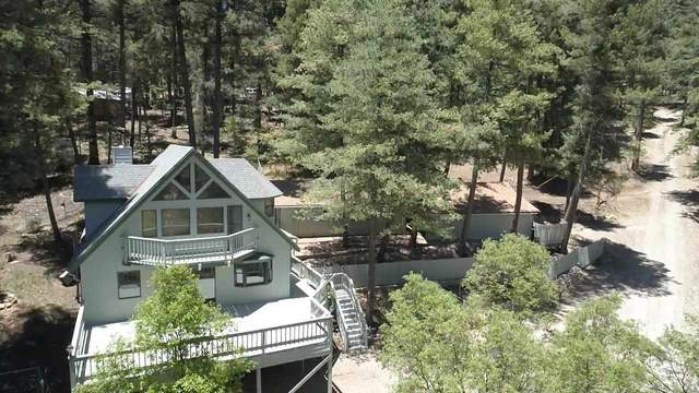 32 Balsam Canyon Dr, Cloudcroft, NM 88317 (MLS #164738) :: Assist-2-Sell Buyers and Sellers Preferred Realty