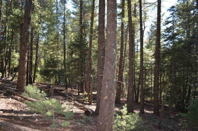 Retreat Rd #4, Cloudcroft, NM 88317 (MLS #164748) :: Assist-2-Sell Buyers and Sellers Preferred Realty