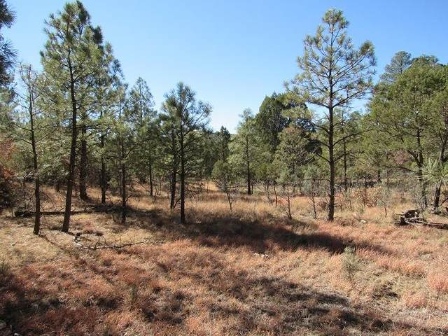 9 Paradise Valley Ct #6, Timberon, NM 88350 (MLS #164789) :: Assist-2-Sell Buyers and Sellers Preferred Realty