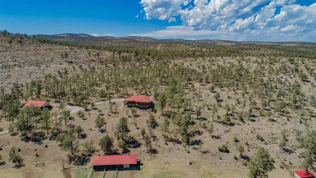 1234 Hwy 24, Weed, NM 88354 (MLS #164796) :: Assist-2-Sell Buyers and Sellers Preferred Realty
