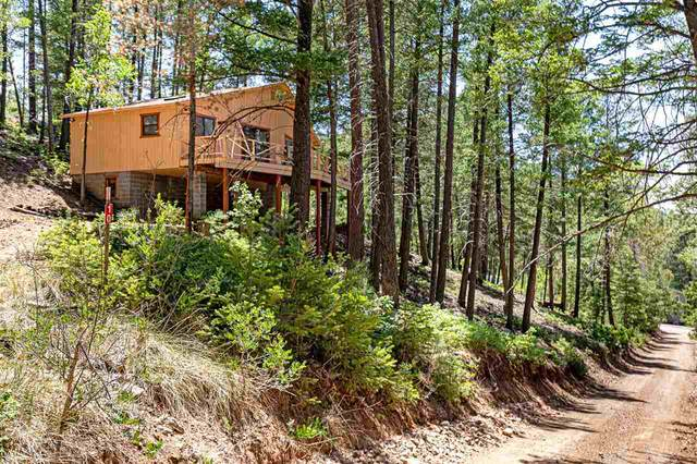 10 Cedar Ln, High Rolls Mountain Park, NM 88325 (MLS #164798) :: Assist-2-Sell Buyers and Sellers Preferred Realty