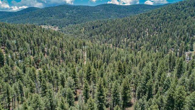 Heather Way, Cloudcroft, NM 88317 (MLS #164801) :: Assist-2-Sell Buyers and Sellers Preferred Realty