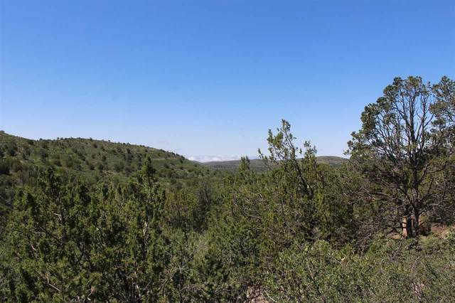 Lot 47 Longfellow Ave #4, Timberon, NM 88350 (MLS #164805) :: Assist-2-Sell Buyers and Sellers Preferred Realty