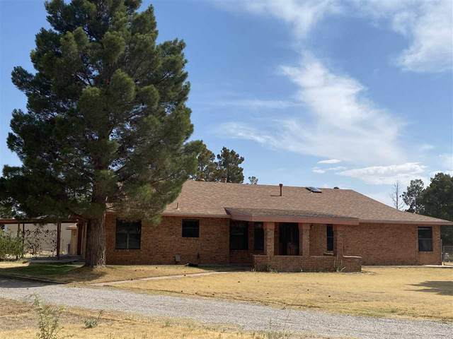 38 High Sierra Dr, Alamogordo, NM 88310 (MLS #164827) :: Assist-2-Sell Buyers and Sellers Preferred Realty