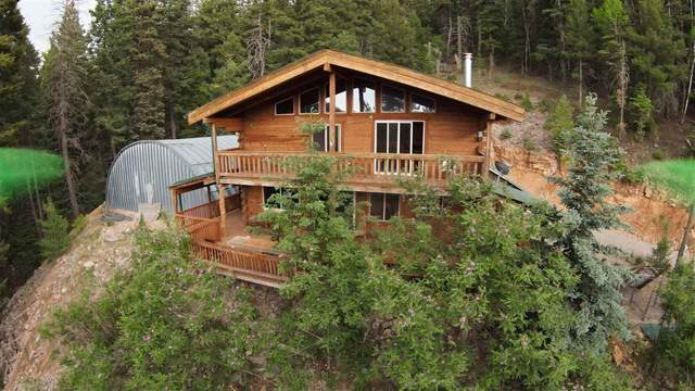 256 Cox Canyon Hwy, Cloudcroft, NM 88317 (MLS #164872) :: Assist-2-Sell Buyers and Sellers Preferred Realty