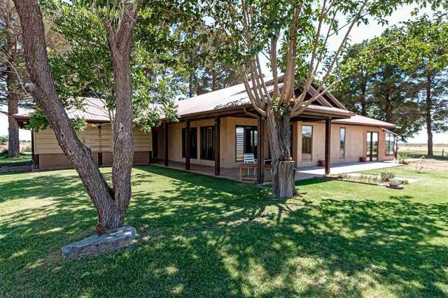 22 Pecan Rd, Tularosa, NM 88352 (MLS #164917) :: Assist-2-Sell Buyers and Sellers Preferred Realty