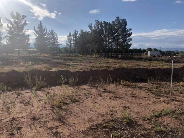 99 NW Bookout Rd, Tularosa, NM 88352 (MLS #164930) :: Assist-2-Sell Buyers and Sellers Preferred Realty