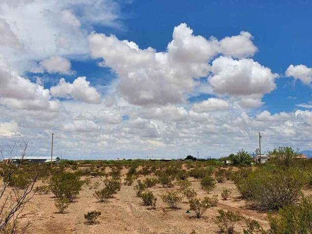 169 Danley Ranch Rd, Alamogordo, NM 88310 (MLS #164933) :: Assist-2-Sell Buyers and Sellers Preferred Realty