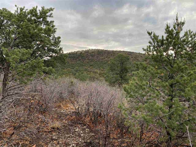 Address Not Published, Timberon, NM 88350 (MLS #164940) :: Assist-2-Sell Buyers and Sellers Preferred Realty
