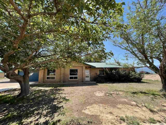 45 Lemin Av, Alamogordo, NM 88310 (MLS #164969) :: Assist-2-Sell Buyers and Sellers Preferred Realty