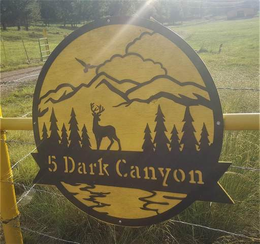 5 Dark Canyon Rd, Cloudcroft, NM 88317 (MLS #164978) :: Assist-2-Sell Buyers and Sellers Preferred Realty