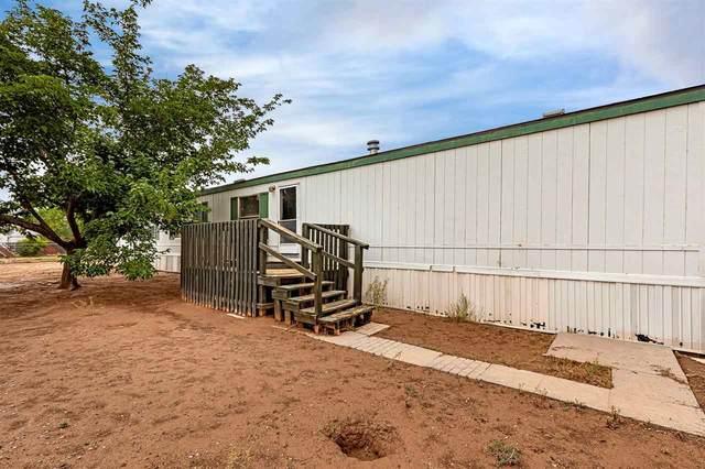 1112 Paradise Av, Alamogordo, NM 88310 (MLS #165021) :: Assist-2-Sell Buyers and Sellers Preferred Realty