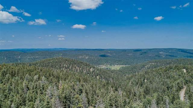Lt 53 Big Dipper Rd, Cloudcroft, NM 88317 (MLS #165024) :: Assist-2-Sell Buyers and Sellers Preferred Realty