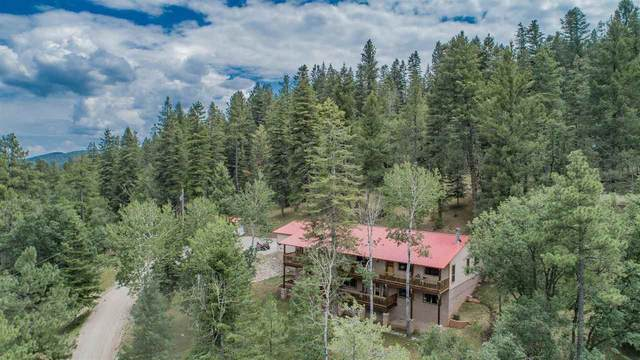 12 Mountain Edge Rd, Cloudcroft, NM 88317 (MLS #165026) :: Assist-2-Sell Buyers and Sellers Preferred Realty