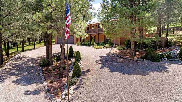21 Sullivan Canyon Rd, Cloudcroft, NM 88317 (MLS #165030) :: Assist-2-Sell Buyers and Sellers Preferred Realty