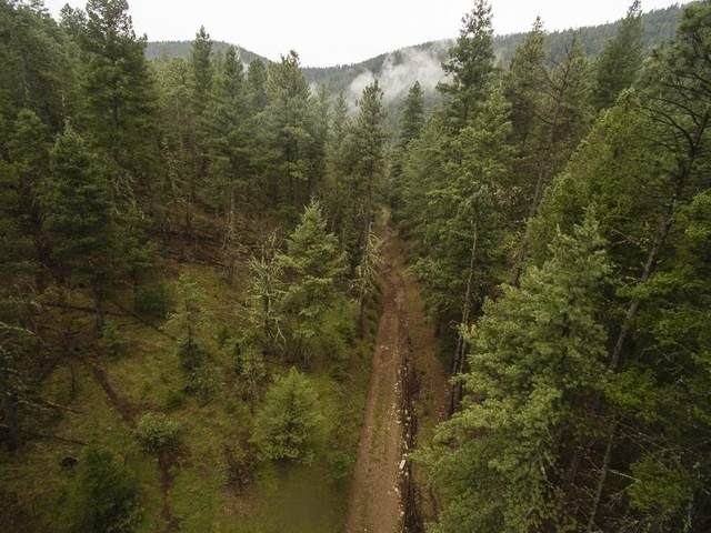 250 Dark Canyon Rd, Cloudcroft, NM 88317 (MLS #165032) :: Assist-2-Sell Buyers and Sellers Preferred Realty