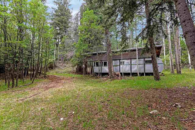 906 Panther Ave, Cloudcroft, NM 88317 (MLS #165037) :: Assist-2-Sell Buyers and Sellers Preferred Realty