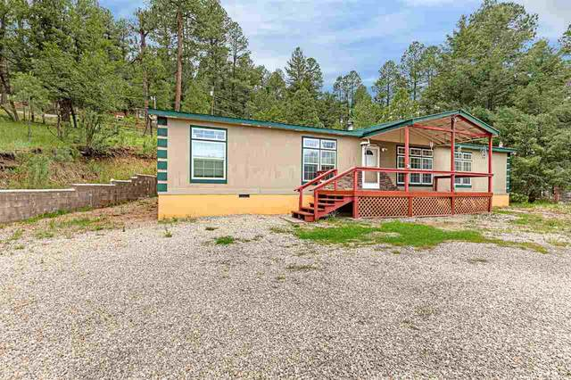 6 Sherwood Forest, Mayhill, NM 88339 (MLS #165066) :: Assist-2-Sell Buyers and Sellers Preferred Realty