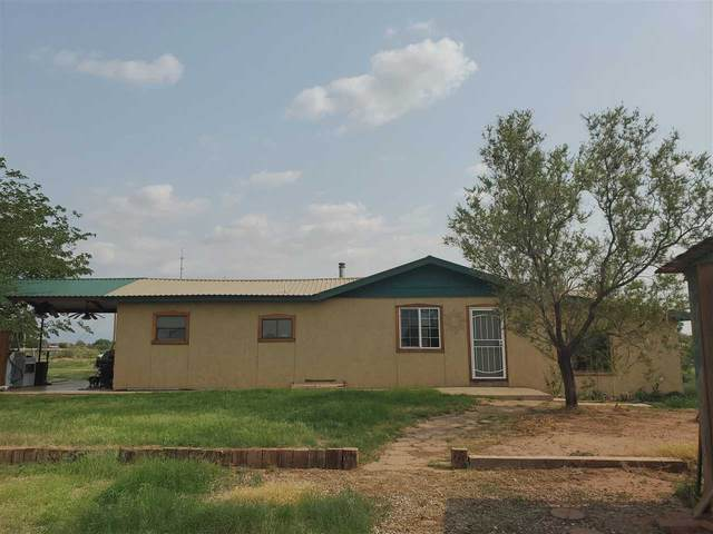 43 Derbyshire Rd, Tularosa, NM 88352 (MLS #165067) :: Assist-2-Sell Buyers and Sellers Preferred Realty