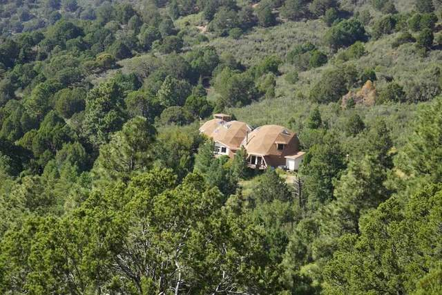 1201 Westside Rd, High Rolls Mountain Park, NM 88325 (MLS #165073) :: Assist-2-Sell Buyers and Sellers Preferred Realty