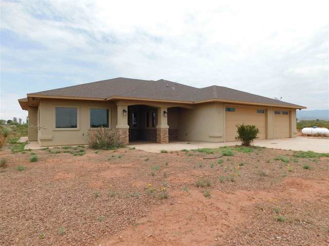 7 Wildcat Ln, Alamogordo, NM 88310 (MLS #165078) :: Assist-2-Sell Buyers and Sellers Preferred Realty
