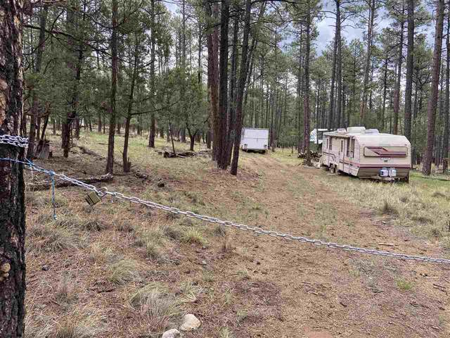 Balkans Dr #9, Timberon, NM 88350 (MLS #165087) :: Assist-2-Sell Buyers and Sellers Preferred Realty