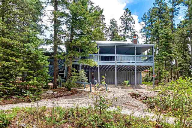 608 Curlew Pl, Cloudcroft, NM 88317 (MLS #165102) :: Assist-2-Sell Buyers and Sellers Preferred Realty