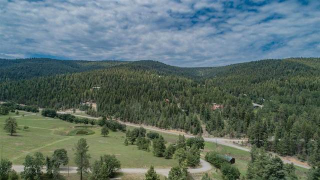 128 Mountain Edge Rd, Cloudcroft, NM 88317 (MLS #165104) :: Assist-2-Sell Buyers and Sellers Preferred Realty