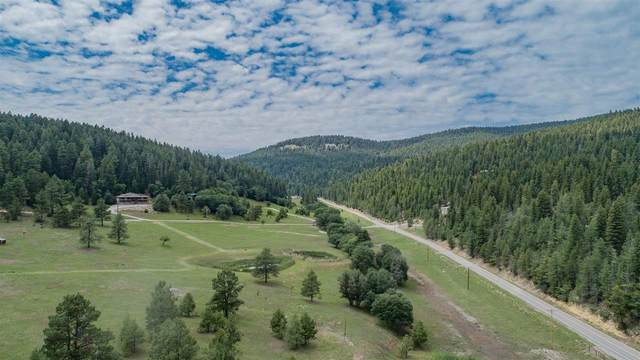 Koty Bear Ln, Cloudcroft, NM 88317 (MLS #165106) :: Assist-2-Sell Buyers and Sellers Preferred Realty