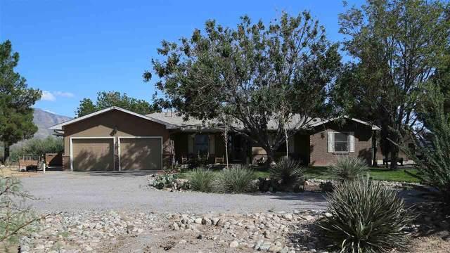 113 Pasa Por Aqui Ln, Alamogordo, NM 88310 (MLS #165112) :: Assist-2-Sell Buyers and Sellers Preferred Realty