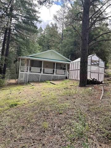 3 Cedar Ln #3, Cloudcroft, NM 88317 (MLS #165114) :: Assist-2-Sell Buyers and Sellers Preferred Realty