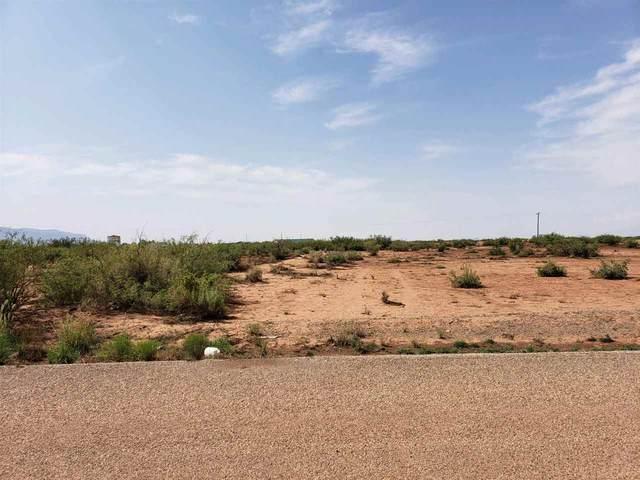 Moondale Rd, Alamogordo, NM 88310 (MLS #165139) :: Assist-2-Sell Buyers and Sellers Preferred Realty
