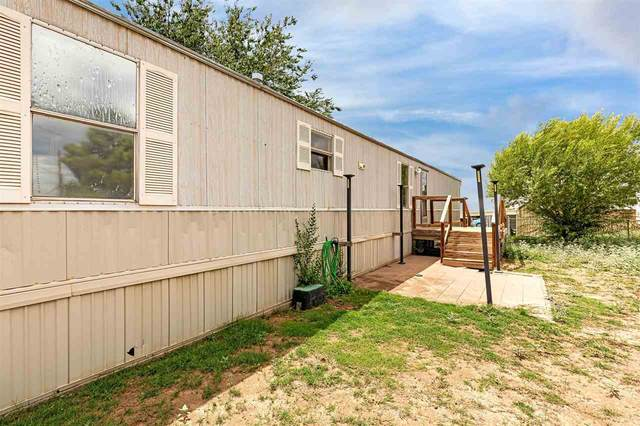 1311 Casady, Alamogordo, NM 88310 (MLS #165147) :: Assist-2-Sell Buyers and Sellers Preferred Realty