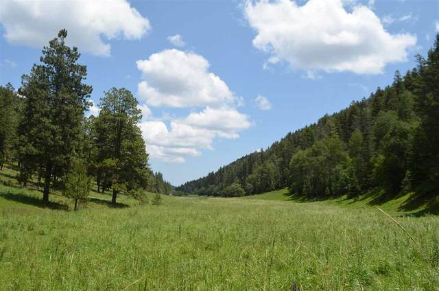 421 Upper Rio Penasco Rd, Cloudcroft, NM 88317 (MLS #165148) :: Assist-2-Sell Buyers and Sellers Preferred Realty