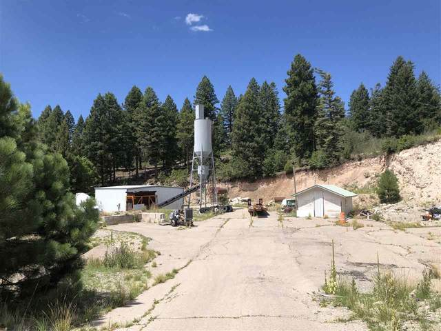 65 Cox Canyon Hwy #1, Cloudcroft, NM 88317 (MLS #165188) :: Assist-2-Sell Buyers and Sellers Preferred Realty