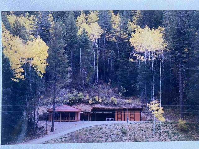 17 Carrie Camp Rd, Cloudcroft, NM 88317 (MLS #165203) :: Assist-2-Sell Buyers and Sellers Preferred Realty