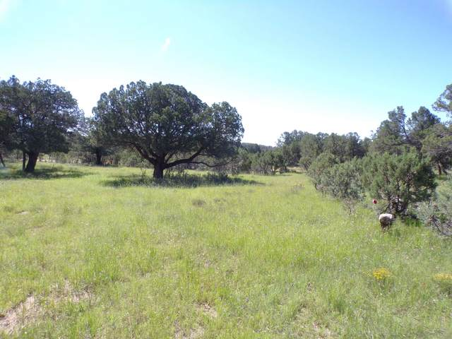 27 High Meadow Ln #4, Timberon, NM 88350 (MLS #165264) :: Assist-2-Sell Buyers and Sellers Preferred Realty