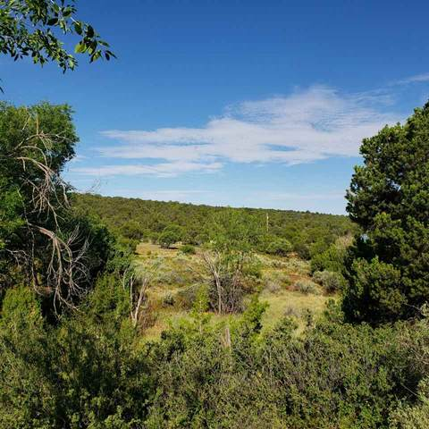Westside Rd, High Rolls Mountain Park, NM 88325 (MLS #165278) :: Assist-2-Sell Buyers and Sellers Preferred Realty